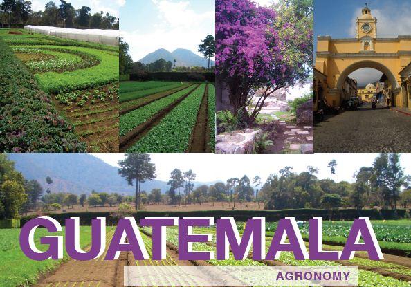 Agronomy Guatemala